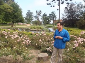 Boas vindas no jardim de roseiral